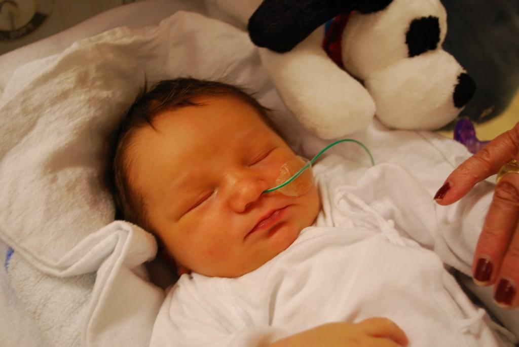 baby petrus og petrine