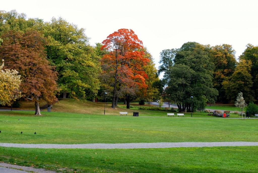 slottskogen gøteborg