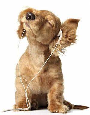 høre på musikk