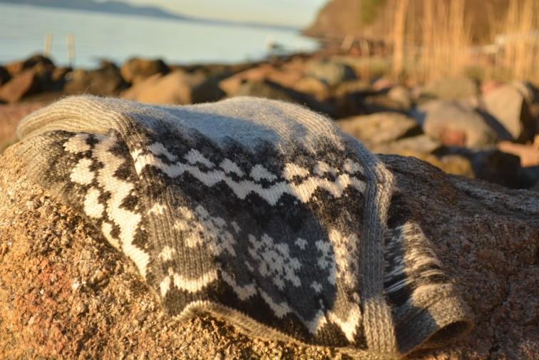 Den gamle jakka, kofta, stranda og vannet