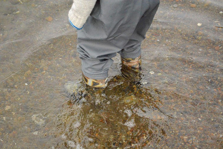 Mamma. se de er kamuflerte i vannet så ikke fiskene skal se støvlene
