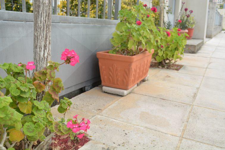 blomsterkrukker Kreta