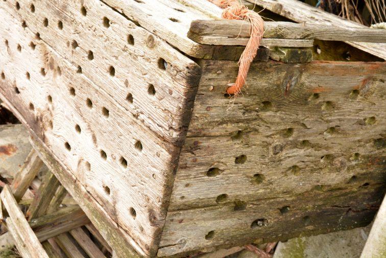 kasse til å oppevare levende fisk i