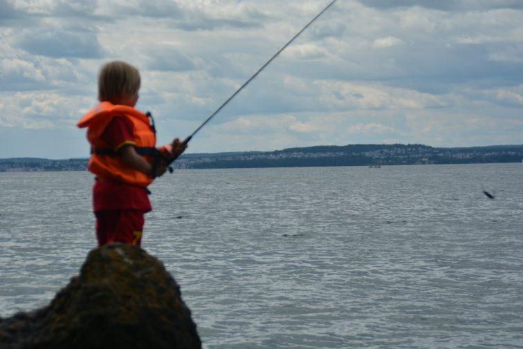 Fiskekonkurranse fra skjæret