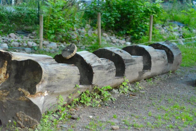 tog av tømmerstokk