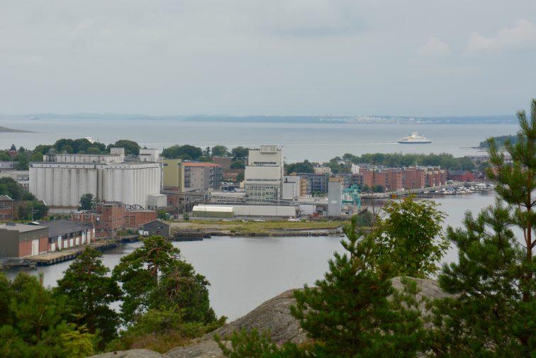 Moss by fra Røysåsen