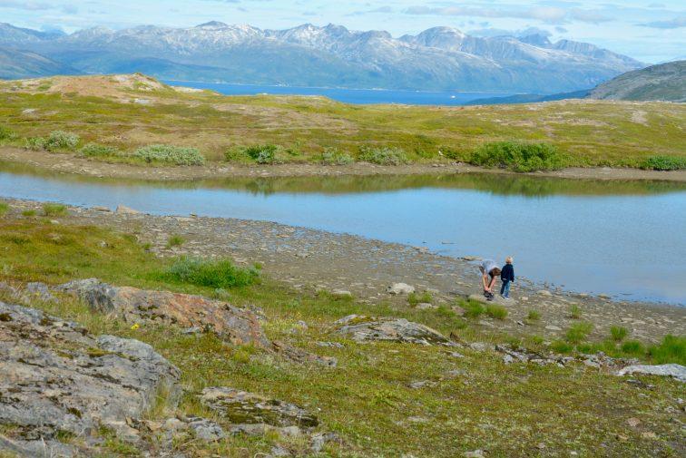 et tjerne på fjellet, Tromsø