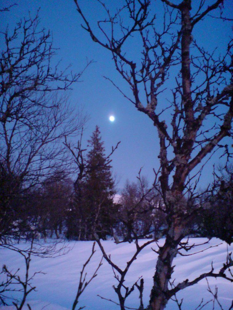 kvelden på HAglebu vinter Petrusogpetrine