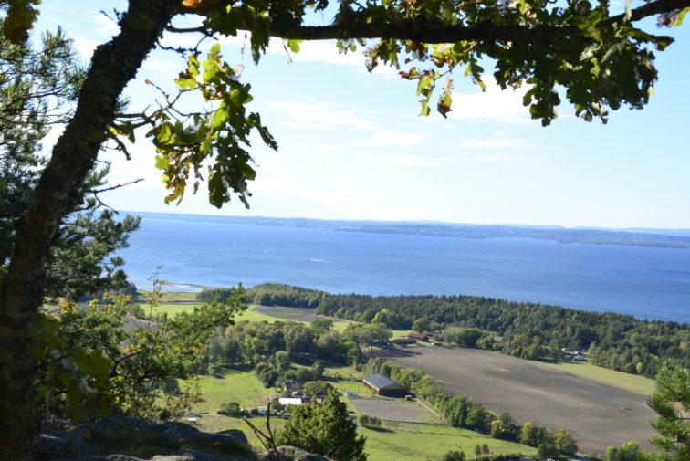 Utsikt fra Bjørnåsen Jeløy Foto: Petrus og PEtrine
