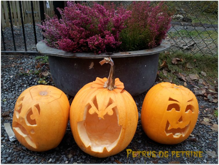 Halloween gresskarlykter petrusogpetrine.no