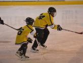 Om hockey og hårsveiser