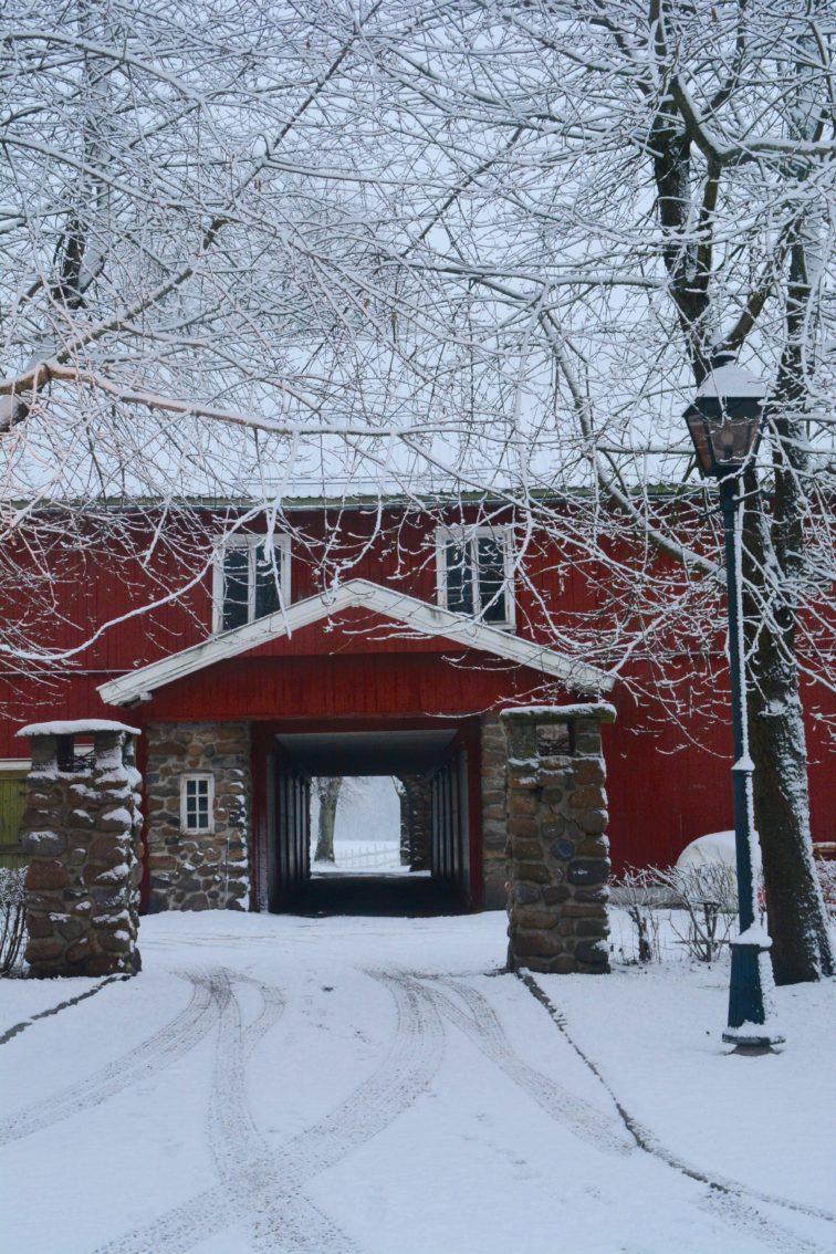 Vinter og snø på Alby petrusogpetrine.no