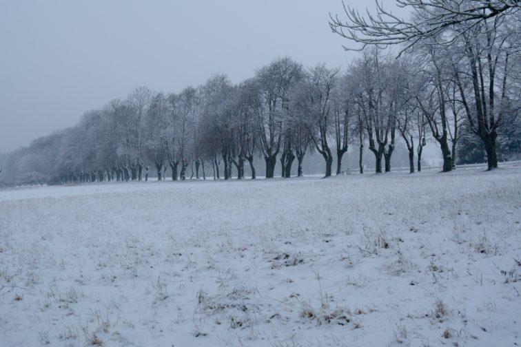 Vinter og snø alby Petrusogpetrine.no