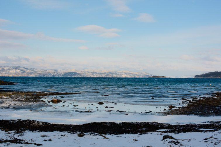 Vinter på Heyerdalstranda jeløy Petrusogoetrine.no